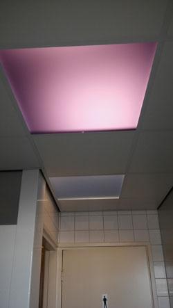 eisen plafond horeca